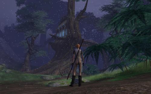 Nikiko Explores the Wood Elven Realm